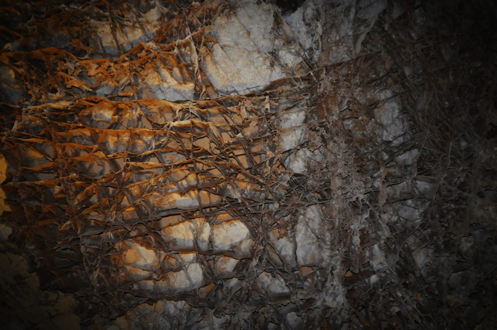 Boxwork, Wind Cave National Park